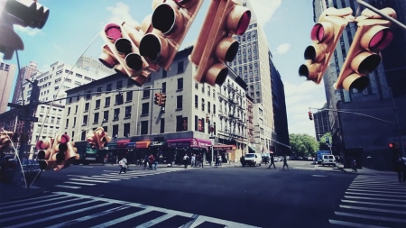 NEW-YORK-BIOTOPES_01